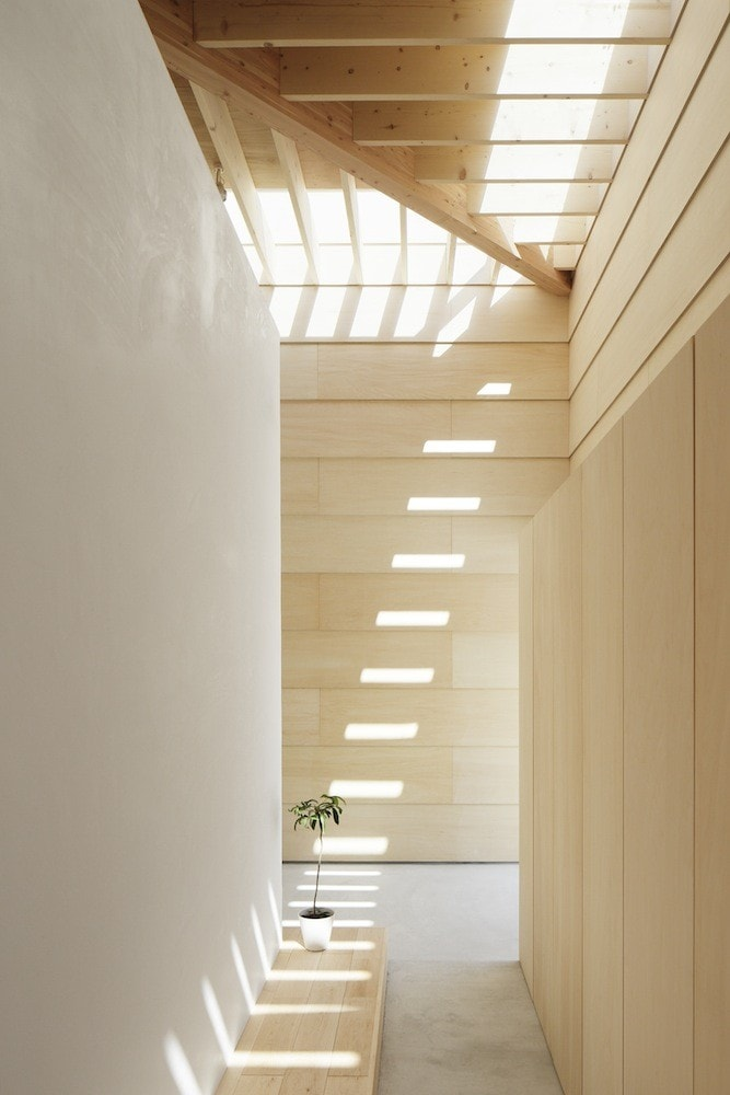 Light wood hallway with patterns of sunlight flowing through the  ceiling