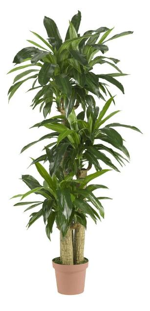 Faux Potted Corn Stalk Dracaena Plant