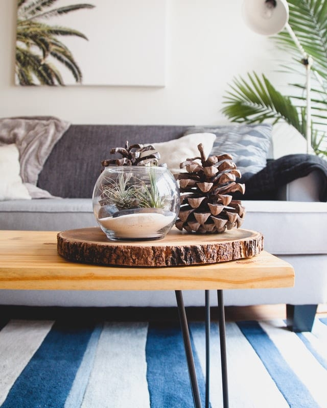 styled coffee table featuring pine cones and a blue and white striped rug
